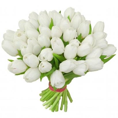 Tulipes blanches acheter un bouquet livraison de for Livraison tulipes